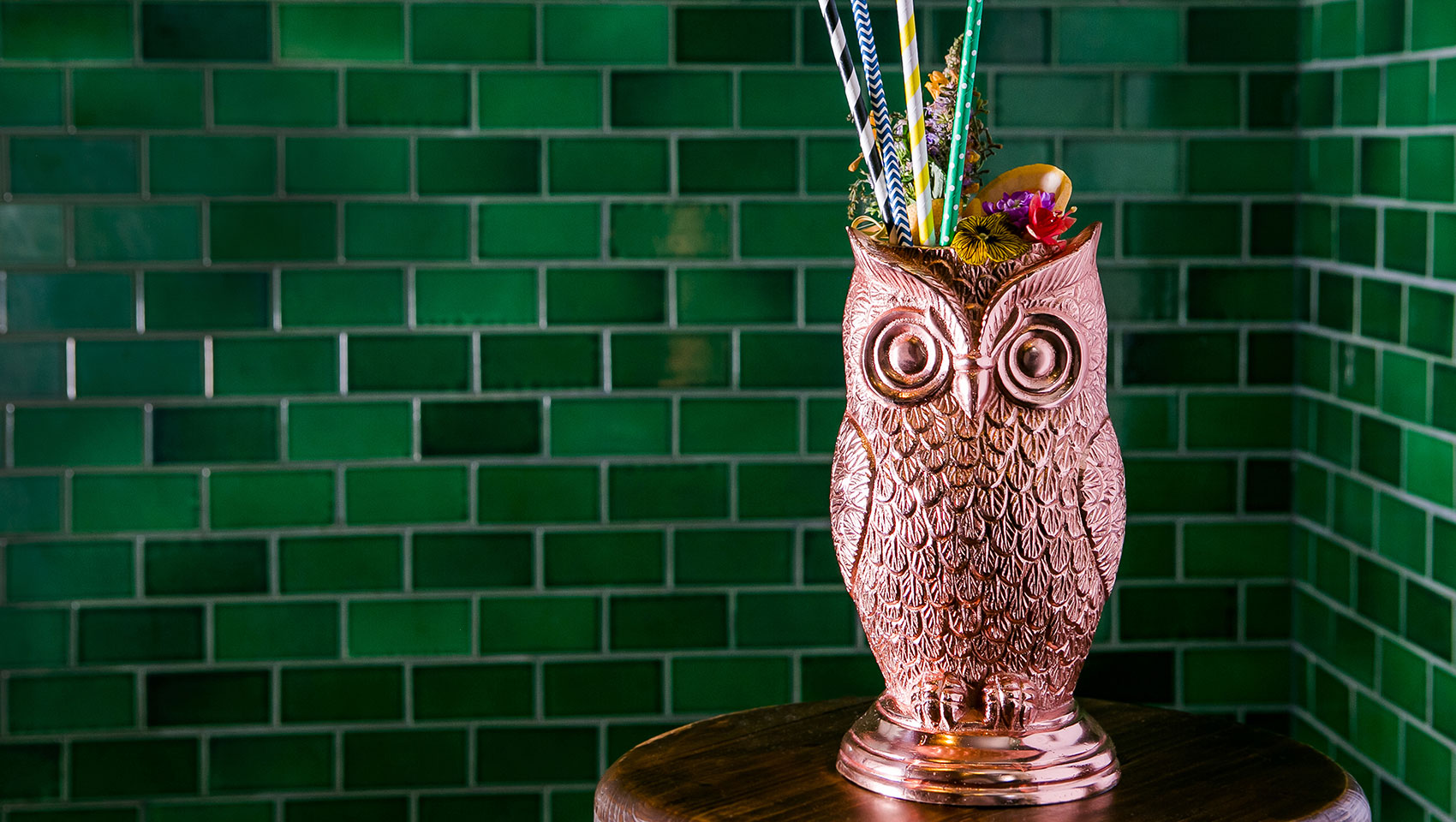 Colorful Owl Drink and Straws